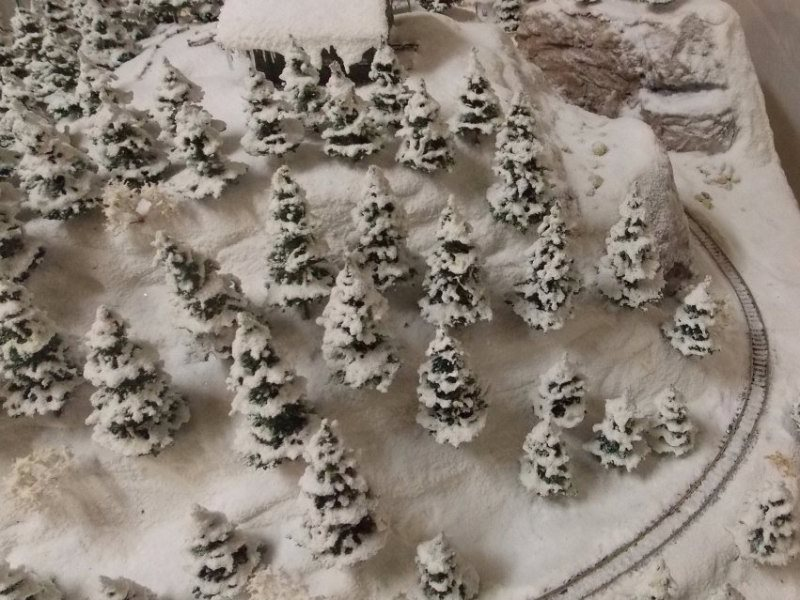 Snow covered n-scale pine trees